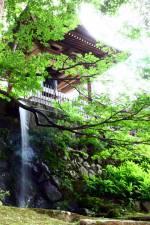 神々しい湯澤神社・健命寺の【涼】